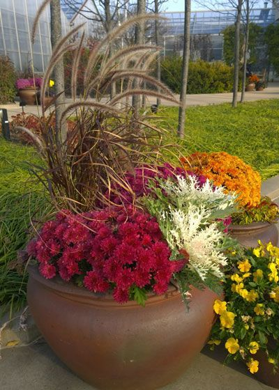 Refresh containers with cool fall weather plants like mums, flowering cabbage and ornamental grasses. Pick up more fall gardening tips at The Home Depot's Garden Club.