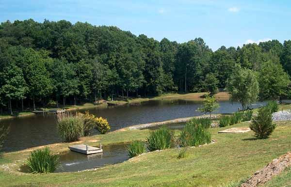 426 best images about swim pond on pinterest for Large backyard landscaping ideas