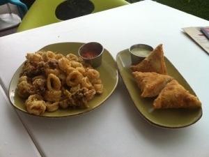 ... share for now. Lemon Pepper Calamari & Ropa Vieja (CHICKEN) Empanadas