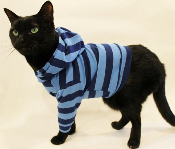 Cat Hoodie Cat Clothes Navy and Light Blue by RockinDogsCoolCats