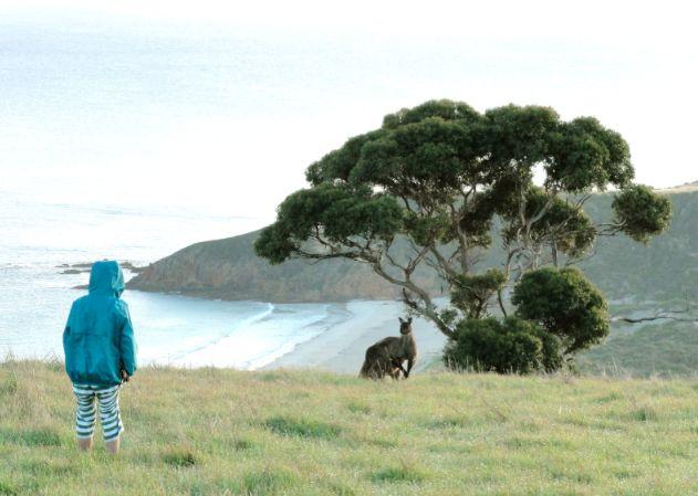 kangaroo island, south #australia, with kids - click image to read post #familytravel