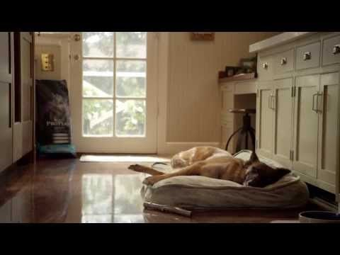 17 Best images about Favorite Commercials on Pinterest ...