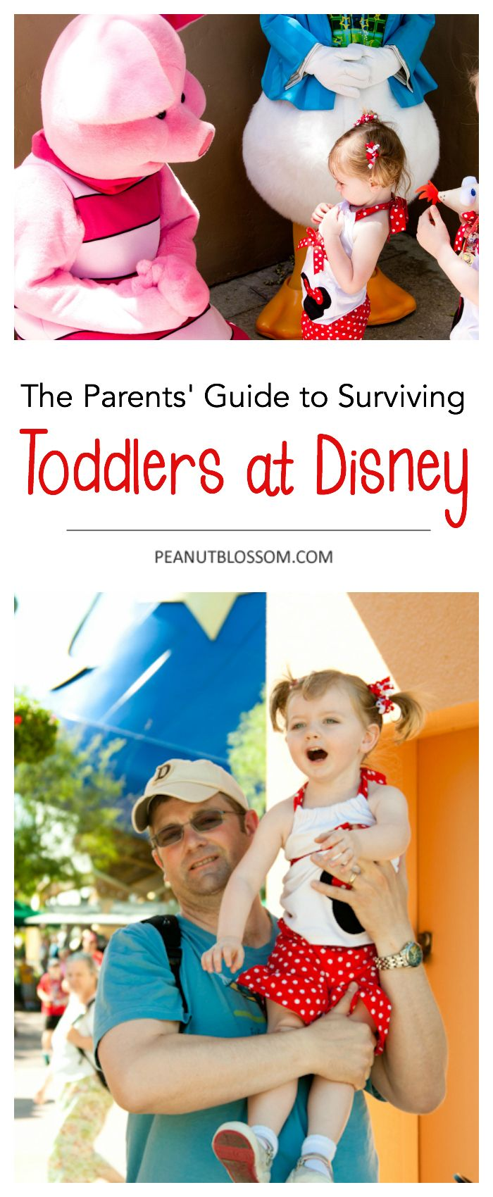 Parents' Guide to Surviving a Toddler at Disney. This is excellent Disney planning advice. Taking a toddler to Disney? Check out how to schedule your day and avoid meltdowns!