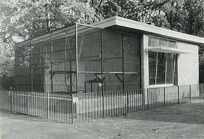 magdeburg zoo 60er und 70er   Das alte Affenhaus, insgesamt sieben Schimpansen lebten hier über 34 ...