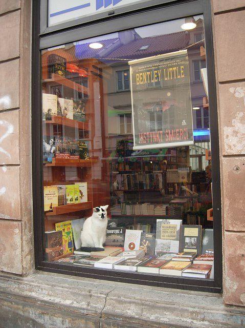 In jede Buchhandlung gehört eine Feline. Beide, Bücher und Katzen, vermitteln das gleiche ruhige Gefühl vollendeten Daseins.