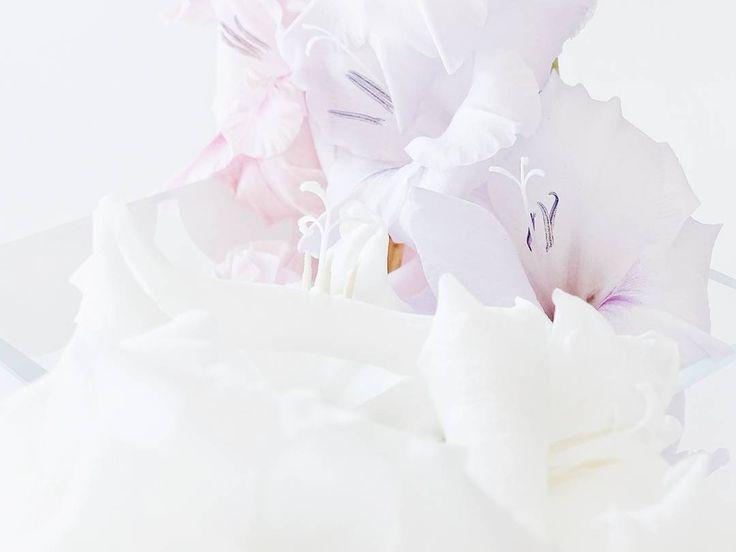 . #zoomthelife | Das würde ich mir auch glatt an die Wand hängen - eine Nahaufnahme in meinen Gladiolen-Strauß. Von Nahem fast schöner als das große Ganze  Einen schönen Abend wünsche ich euch! . . . . #flowers #flowerslovers #flowersmakemehappy #flowerblogger #flowerstyling #naturalbeauties #flowerpowerbloggers #myfreshflowerfriday #gladiolen #blumen #gladiolenpower #gladiolus #crushonthecolorblush #pastel