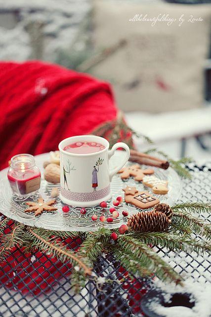 Cranberry Tea by loretoidas, via Flickr: Christmas Time, Teas Time, Cozy Winter, Christmas Goodies, Winter Wonderland, Country Christmas, Christmas Decor, Cranberries Teas, Christmas Cottages