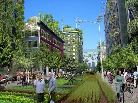Green Ideas Turn New York City into Efficient Urban Farming Area