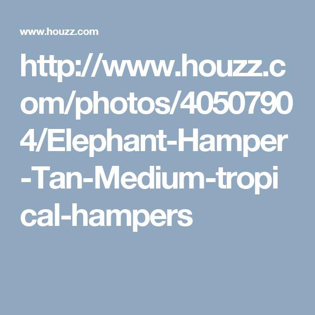 http://www.houzz.com/photos/40507904/Elephant-Hamper-Tan-Medium-tropical-hampers