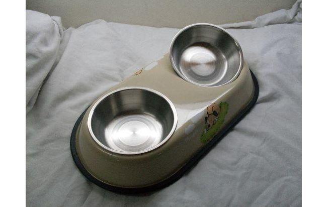 comederos de lujo para perros chiquitos