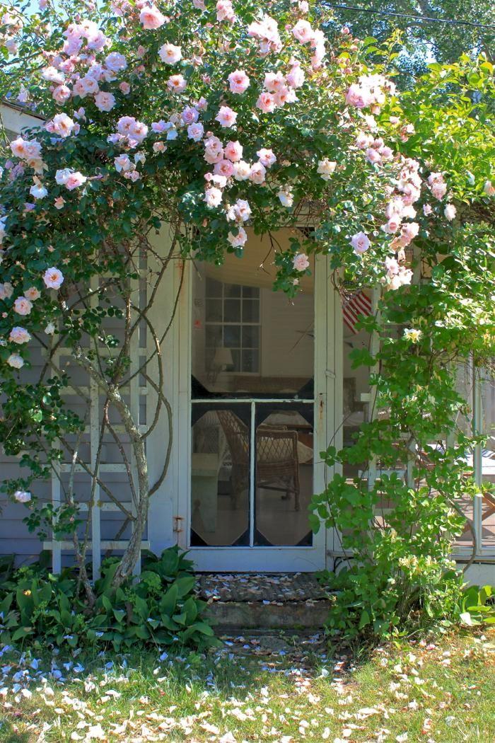 gorgeous timber screen door