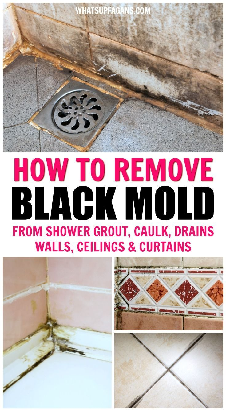 How To Get Rid Of Black Mold Anywhere In Your Shower Remove Black Mold Toilet Cleaning House Cleaning Tips