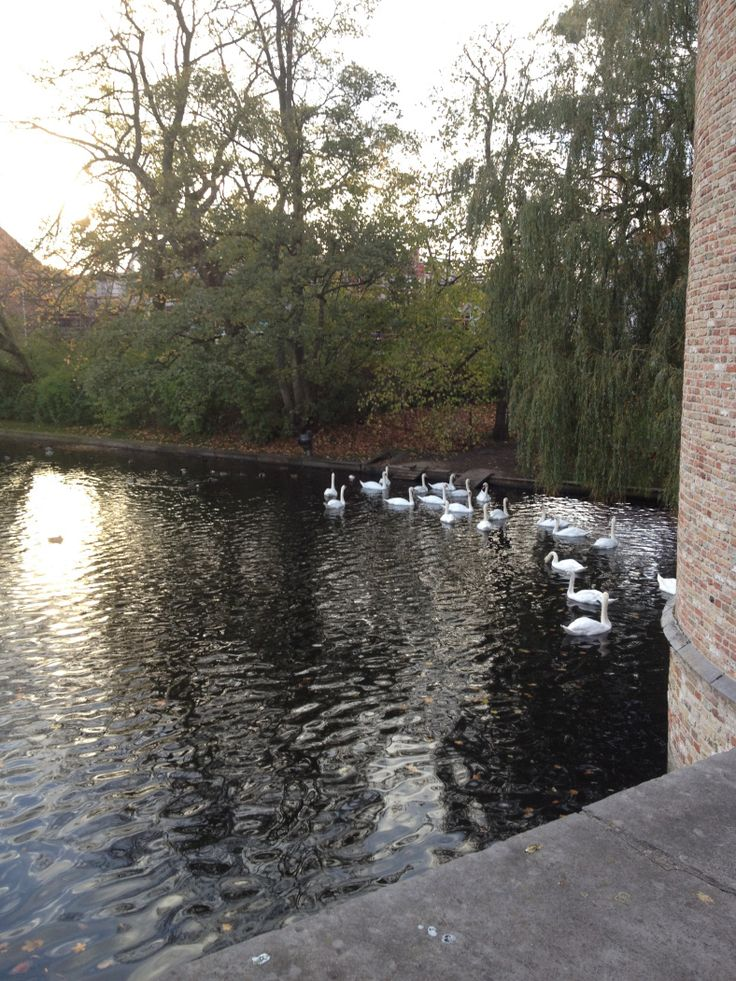 http://mylandingrunway.com/2014/09/08/lets-go-on-a-road-trip-the-fairytale-cities-brugge-ghent/ #travel #brugge