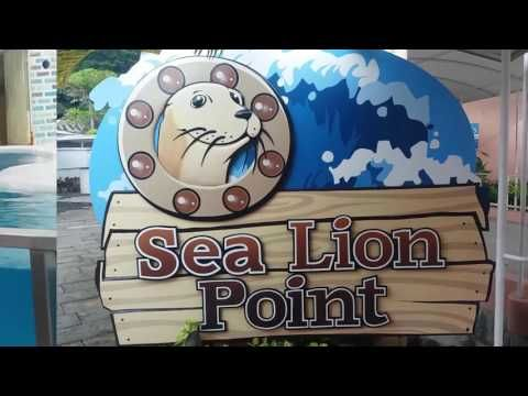 Marine Theme Park at Subic Bay Philippines