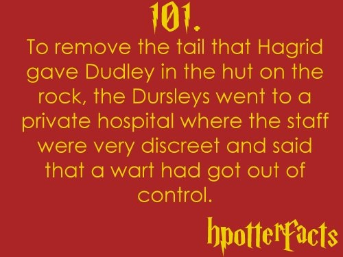 #hpotterfacts 101