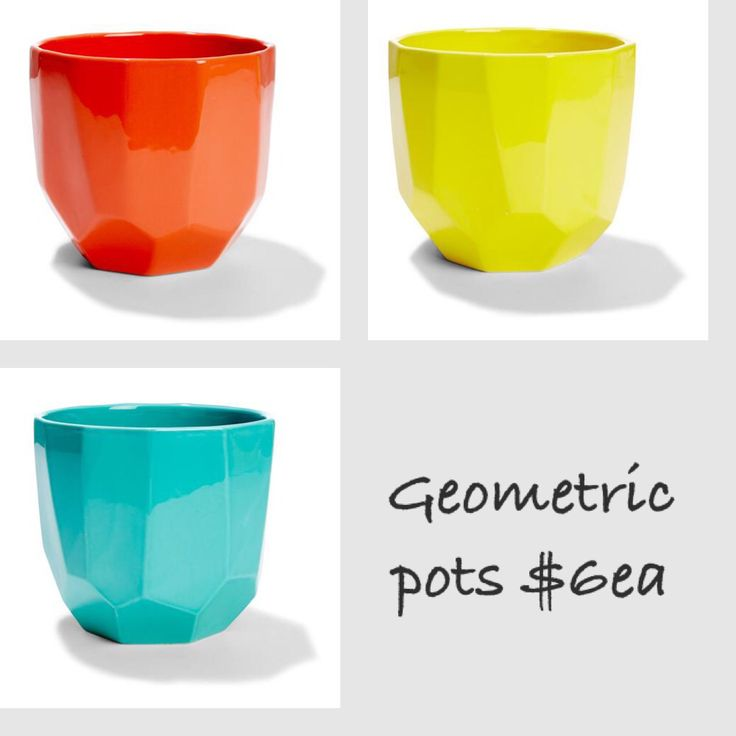 Geometric pots $6ea (for 3 tier stand and 1 extra for back of bike?)