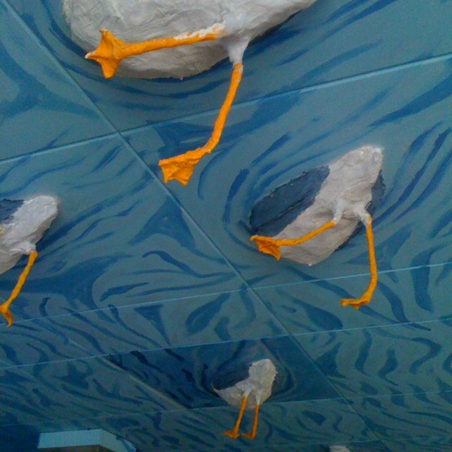 Classroom Hanging Decoration ~ Duck butt ceiling design pinterest