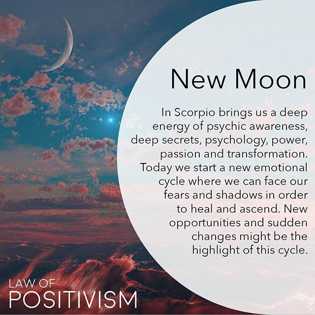 The New Moon (Saturday) at 6.42 AM (EST) is in Scorpio and standing together with the Sun. New Moons are new emotional cycles and times for new beginnings and initiations. Scorpio is the second water sign and is a deep and passionate sign that deals with everything hidden; secrets, fears, pains, shadows, sexual desires and power. Scorpio on the lowest level is like a scorpion: controlling and stings when it eels threatened or hurt. On a higher level, Scorpio is the eagle: having a wider…
