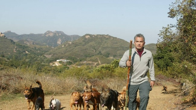 Cesar Millan, The Dog Whisperer, Once Attemped Suicide, but Prevailed (inspirational story here)