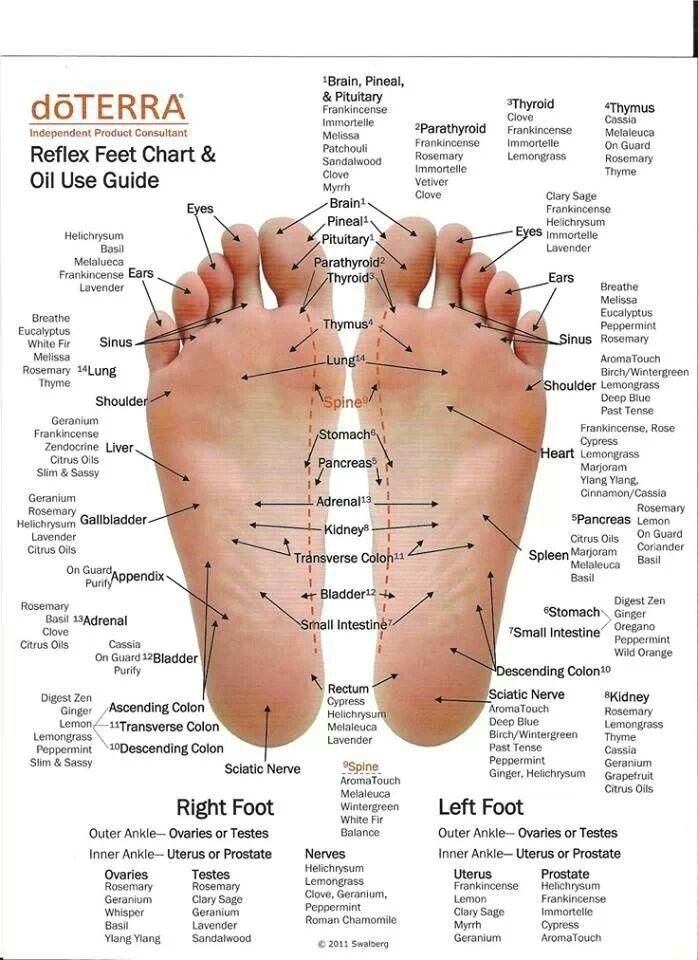 Reflex feet chart