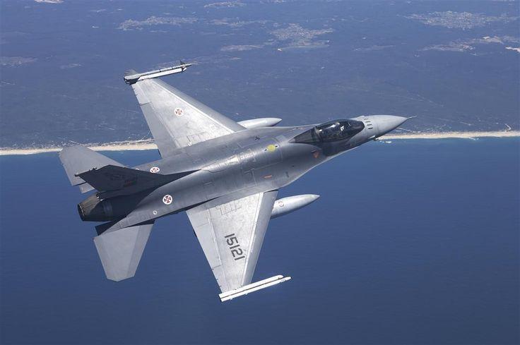 logo força aerea portuguesa - Recherche Google