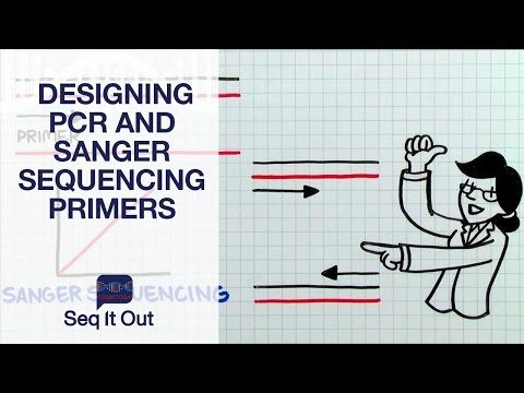 Designing PCR and Sanger Sequencing Primers– Seq It Out #5 - YouTube