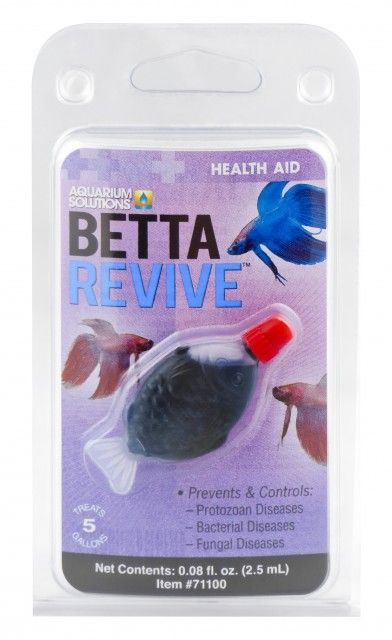 Best 25 betta fish toys ideas on pinterest diy betta for Toys for betta fish