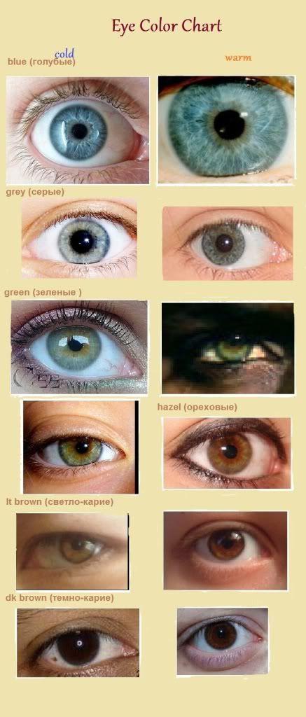 Красота, вдохновленная природой - Определяем цветотип: Цвет глаз и рисунок радужки
