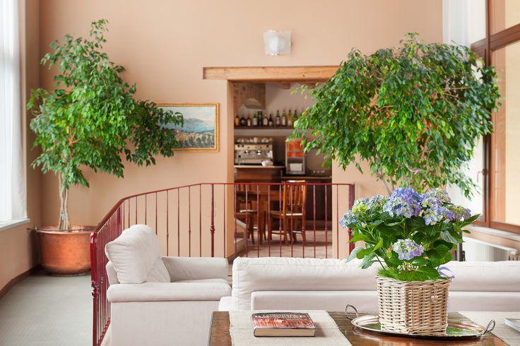 3 Sterne Hotel Gardasee - Hotel Tre Punte Navazzo di Gargnano