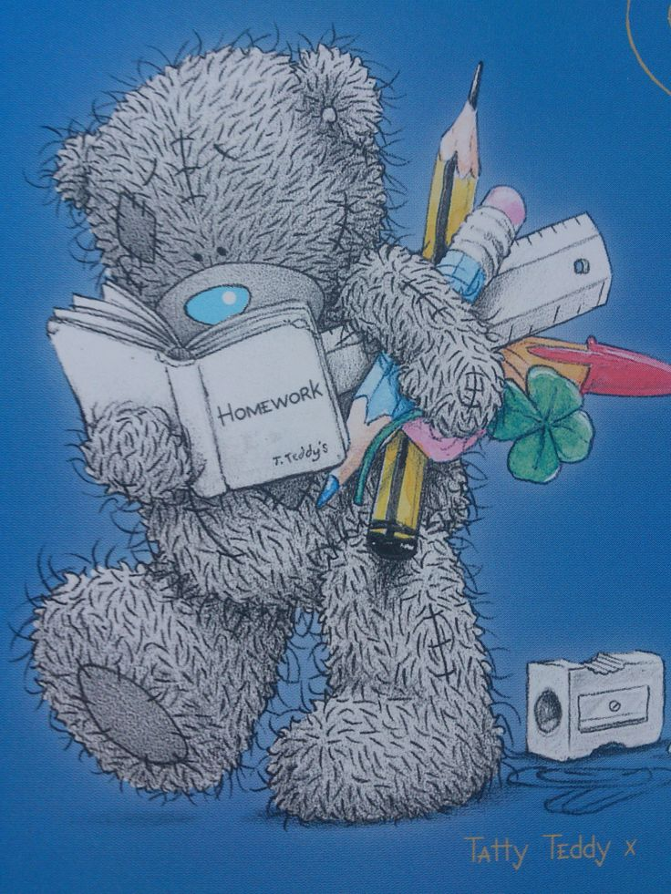 School Tatty teddy