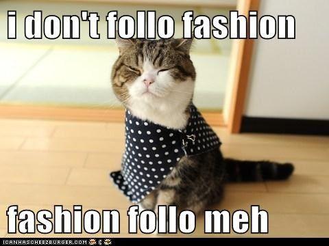 I don't follow fashion    fashion follow meh I do love my cat but Maru is in my.                                          Top ten favorite cats.