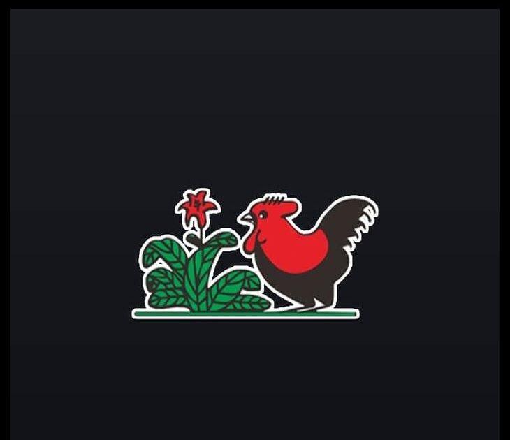 Terbaru 29 Gambar Ayam Jago Kartun Ayam Jago Dapat Digambar Dalam Bentuk Kartun Yang Beraneka Macam Tergantung Kreativitas Kalian Gamb Gambar Animasi Kartun
