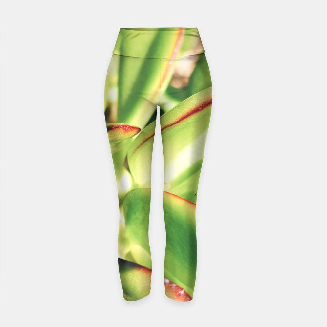 green living yoga pants