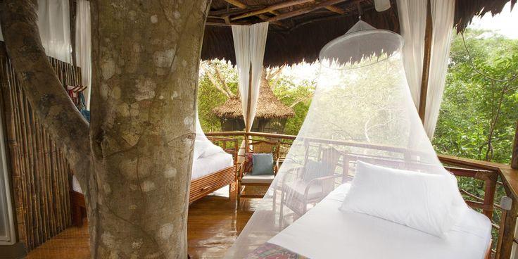 Peru Treehouse eco lodge. Peruvian Amazon hotel. #PeruvianAmazon #EcoHotel