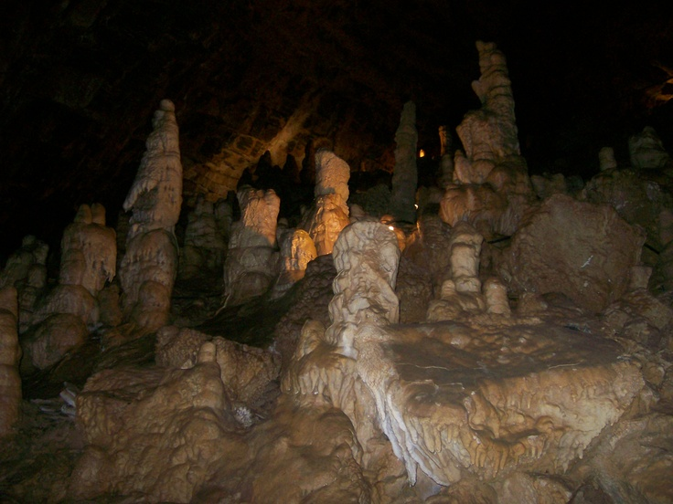 Man Cave Jackson Tennessee : Best prehistoric early man images on pinterest