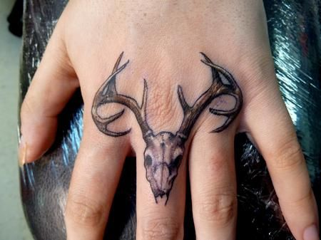 Deer Skull on Knuckles