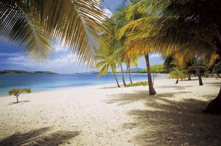 Sun Bay Beach, on the Puerto Rican island of Vieques, is the ideal Caribbean beach.