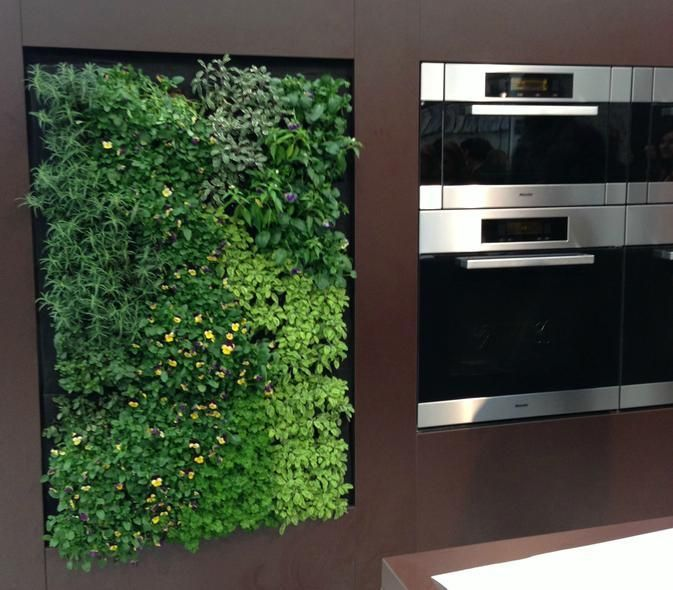 The 10 coolest things coming to your home gardens herbs Indoor living wall herb garden