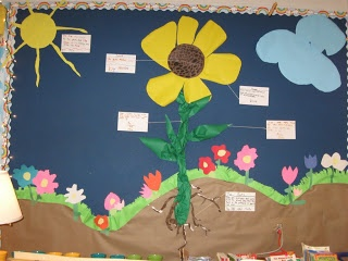 Plant Growth and Change Bulletin Board- This is good bulletin board idea to have displayed inside the classroom. The students could work as a group to design a visual of a plant. Also, students could be asked to make a label to go along with each part of the plant describing what it is and its importance to the plant's growth.