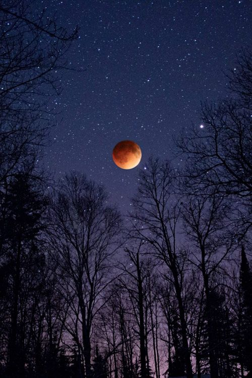 """hand-in-hand-heart-to-soul82914: """"atraversso: """"Total Lunar Eclipse  by Benjamin Tatrow """" Good night! """""""