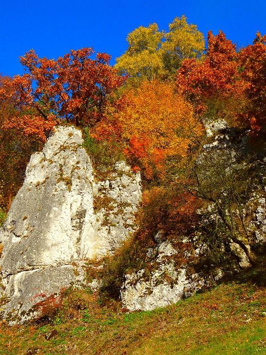 Les Pères Fondateurs, Pologne, Nature, Paysage