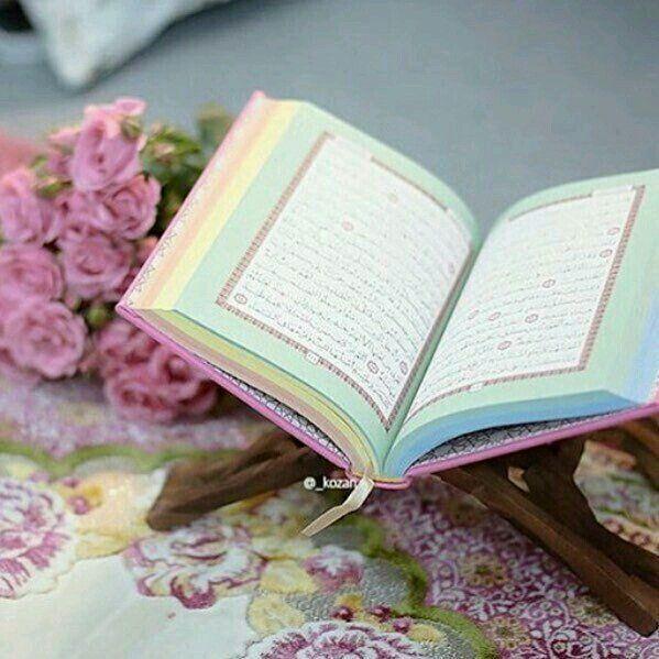 Quran, New Ideas, Holy Quran