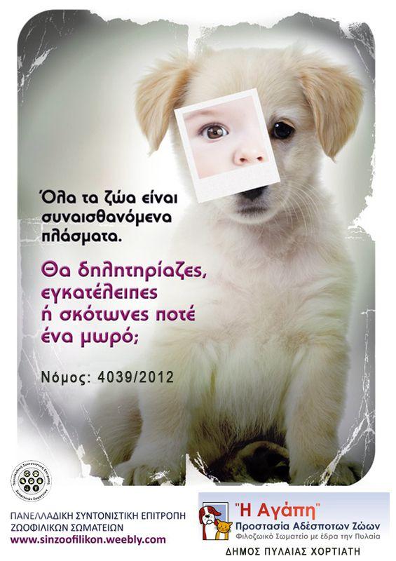 Αφίσες για αδέσποτα
