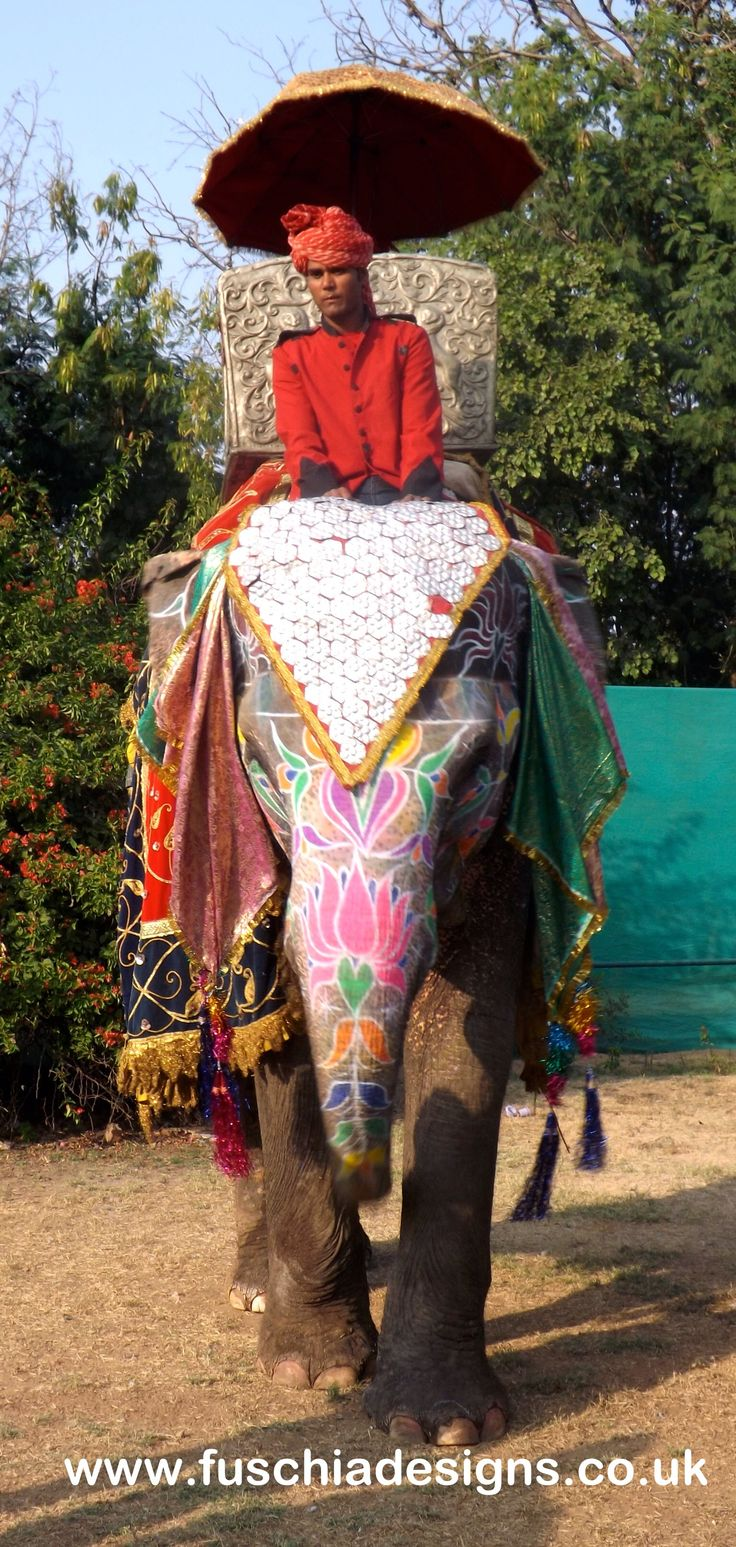 Decorative Indian elephant with hand painted designs and a beautiful coat for polo at the Jai Mahal Palace Hotel in Jaipur India.  By www.fuschiadesigns.co.uk.