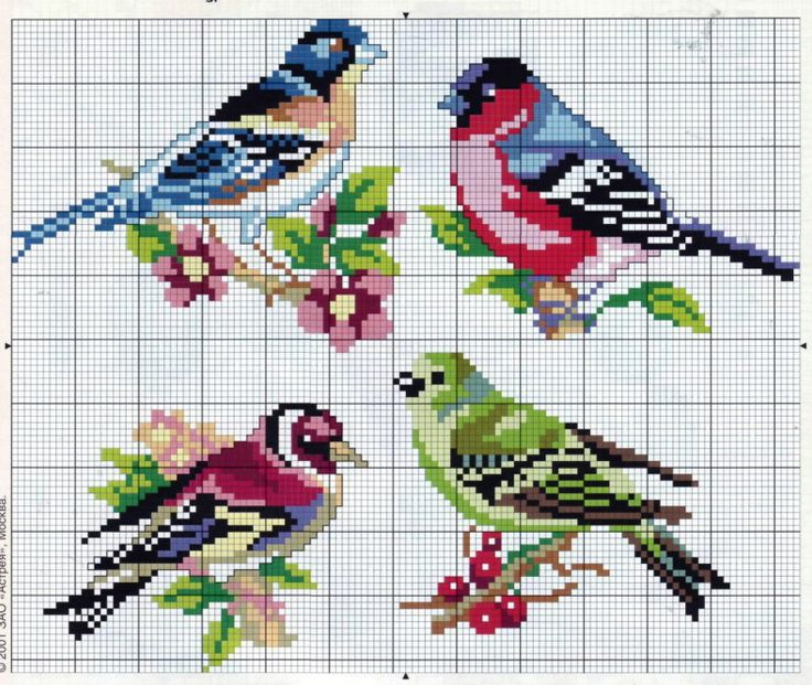 Cross-stitch Birds ... no color chart available, just use pattern chart as your color guide.. or choose your own colors...     Gallery.ru / Фото #16 - 201 - markisa81