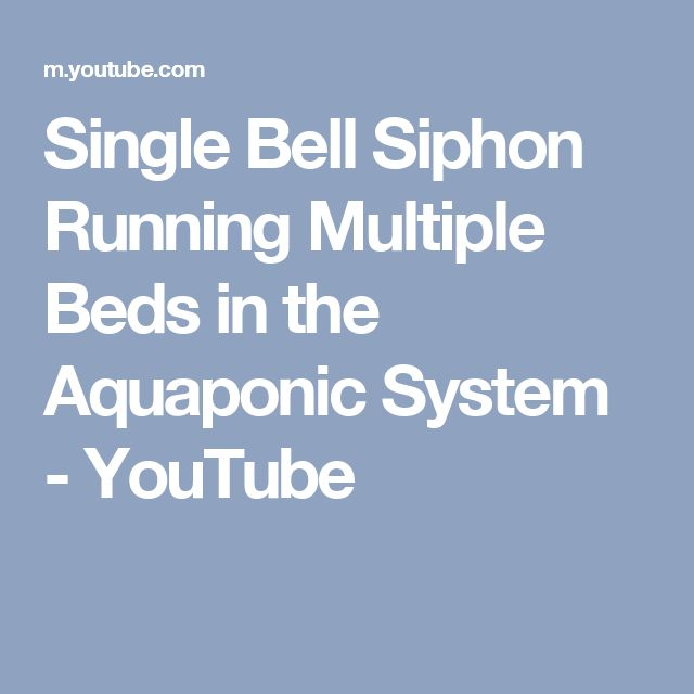 Single Bell Siphon Running Multiple Beds in the Aquaponic System - YouTube