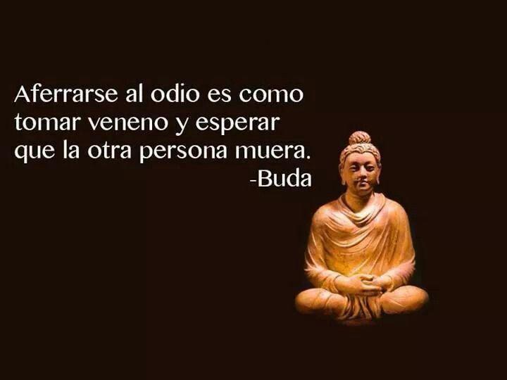 Amor Es Frases: 39 Best Images About Frases De Buda . On Pinterest