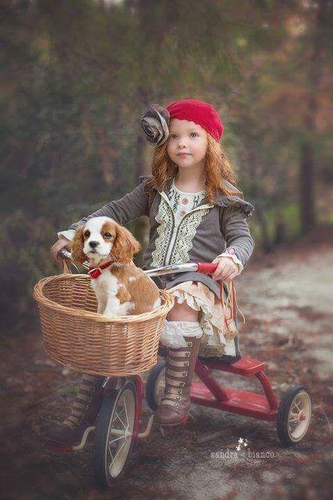 2302 best dogs images on pinterest beste freundin hunde und beste freunde. Black Bedroom Furniture Sets. Home Design Ideas