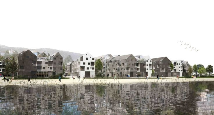 Daniele Molinari, rocco salomone · SOCIAL HOUSING IN BERGEN. SELF-ORGANISATION, SHARING, PROCESS