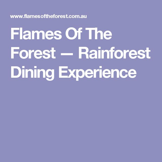 Flames Of The Forest — Rainforest Dining Experience